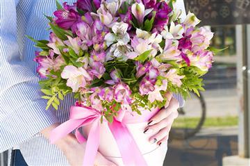 Цветы.Комнатные растения
